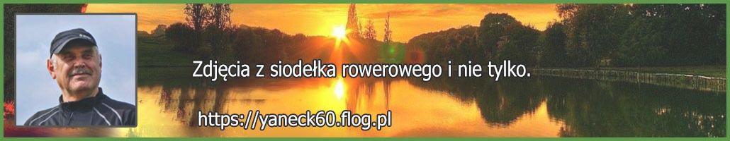 fotoblog.jpg (3 KB)